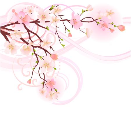 �rbol de la floreciente