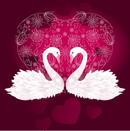 swan pair: Two swans Illustration
