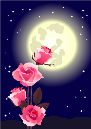 Bunch of roses at midnight  Vector