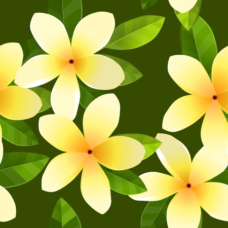 aloha: Seamless Pattern mit Frangiapani Blumen