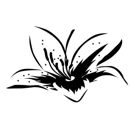 Black-and-white flower Stock Vector - 8380193