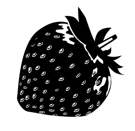 blackandwhite: Black-and-white strawberry  Illustration