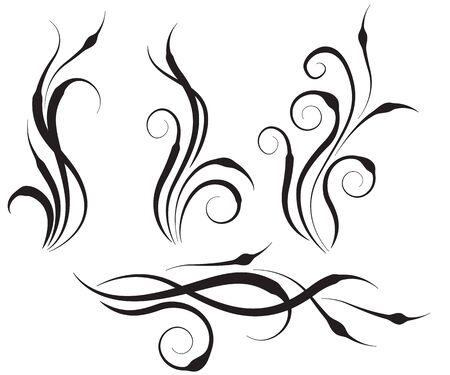 leaf curl: Floral swirl design elements Illustration