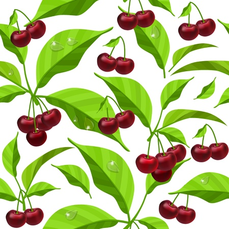 Seamless pattern with cherry  leaves and berries Stock Vector - 8414791