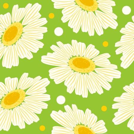 Seamless floral pattern with white daisy  Vector