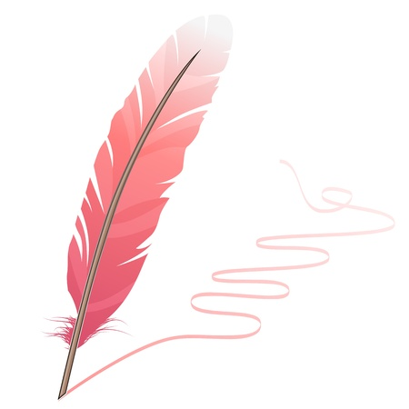 a feather: Pink feather