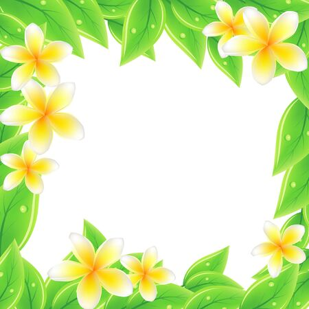 orchid tree: Frame with green leaves and frangipani Illustration