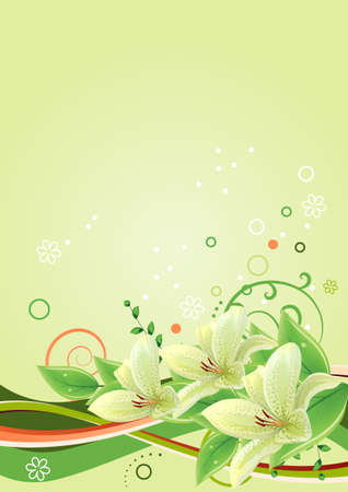 Frame with lilies  Vector