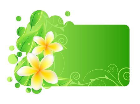 Frame with green leaves and frangipani Vector