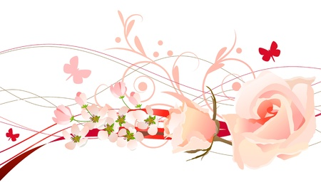 rosa: Floral design element  Illustration