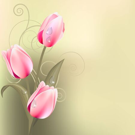 Light green background with tulips Stock Vector - 8813982