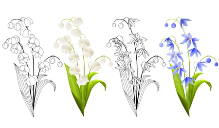 Collection of spring flowers Stock Vector - 8987405