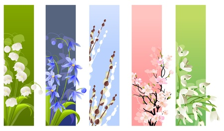 Collection of spring flowers Vector