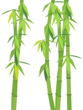 japanese style: Green bamboo