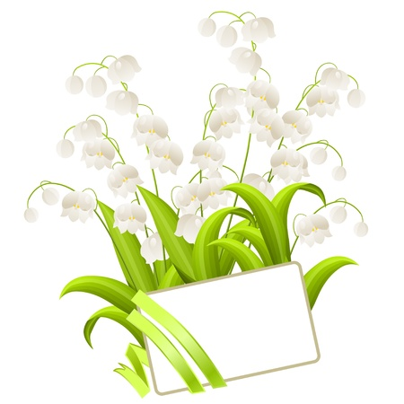 Bunch of lilies of the valley Vector