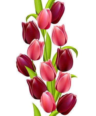 Patr�n transparente vertical con Tulipanes