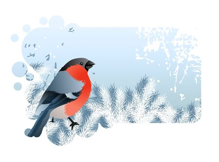 bullfinch: Christmas frame with bullfinch  Illustration