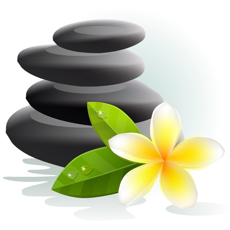 bali: Plumeria flower and spa stones