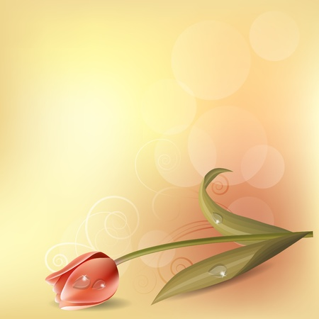 Pastel background with tulip Stock Vector - 10639851