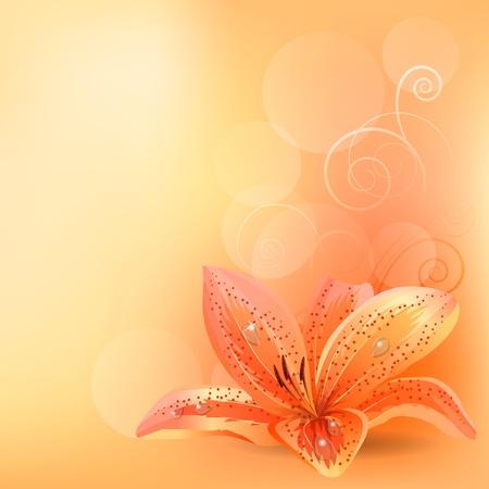 fragrance: Pastel achtergrond met oranje lelie Stock Illustratie