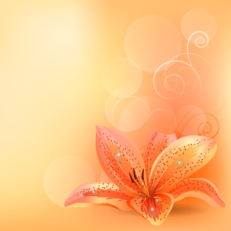 flower clip art: Pastel background with orange lily Illustration