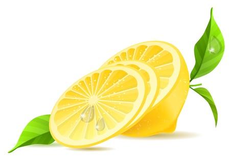 lemon slice: Half of lemon and slices Illustration