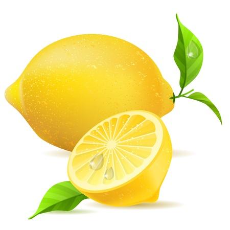 現実的なレモンと半分  イラスト・ベクター素材