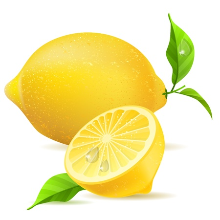 citric: Realistic lemon and half