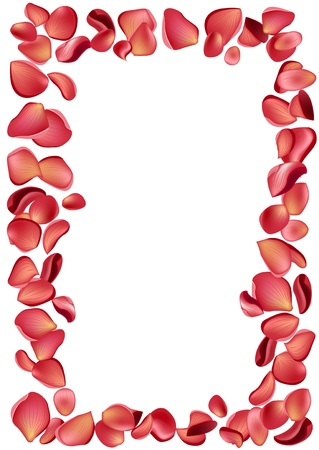 Frame made of rose petals Vector