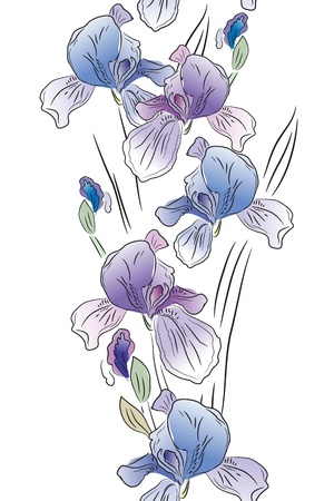 Seamless vertical border with irises Vector