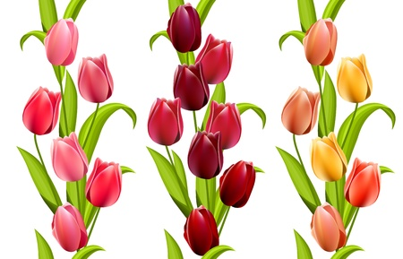 Vertical seamless patterns with tulips Vector