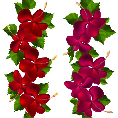 beautiful red hibiscus flower: Samless border made of hibiscus flowers