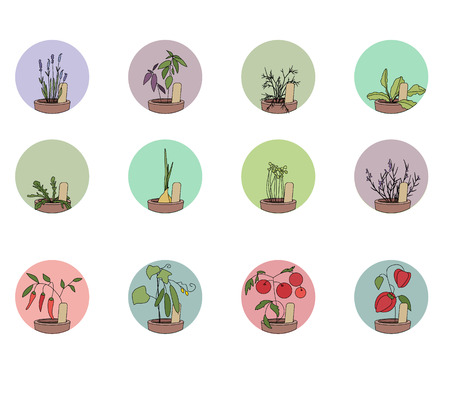 Hers and vegetables - onion,pepper, lavender, tomato. Set of round icons Vector