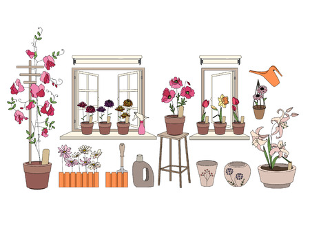 window sill: Flower pots with herbs and vegetables. Gardening tools. Plants growing on window sills and balcony