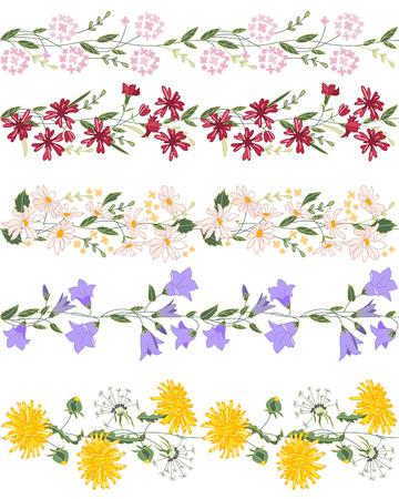 pâquerette: Motif brosse transparente avec fleurs stylisées d'été vives. Texture horizontale sans fin. Fleurs sauvages - dangelion, marguerite, campanules et autres