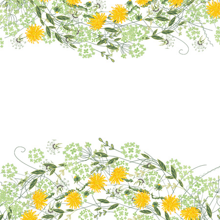 white greeting: Detailed contour square frame with herbs, daisy and other flowers isolated on white. Greeting card for your design, greeting cards, wedding announcements, posters.