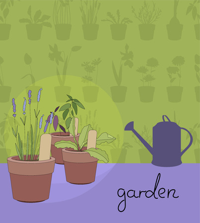 flower pots: Flower pots with herbs and vegetables.