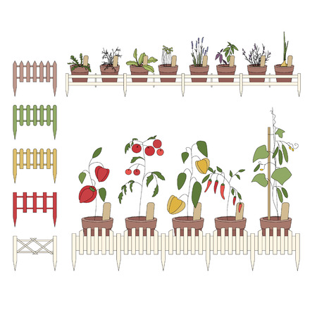 balcony window: Flower pots with cultivated flowers. Decorative fence. Plants growing on window sills and balcony