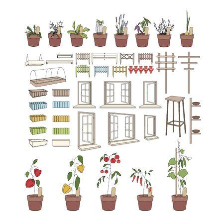plants growing: Vasi da fiori con erbe e verdure. Attrezzi da giardinaggio. Le piante che crescono su davanzali e balcone