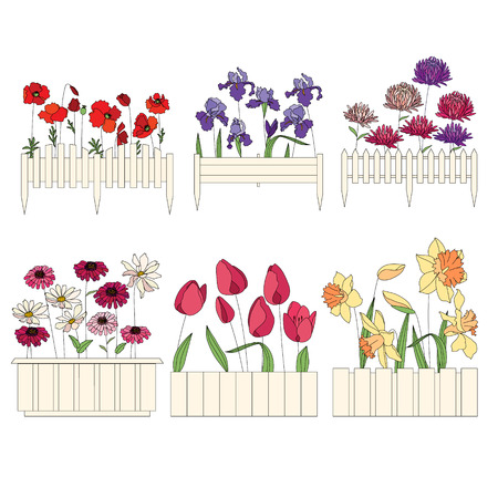 plants growing: Flower pots with cultivated flowers. Decorative fence. Plants growing on window sills and balcony