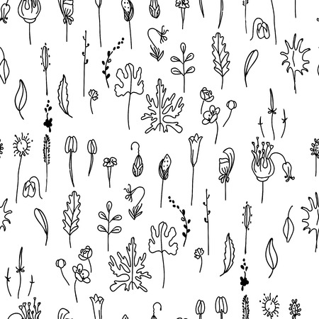 flax seed: Seamless pattern with floral seeds.Black and white.   Endless texture for your design, announcements, postcards, posters.