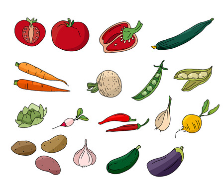 various: Different vegetables isolated on white. For your design Illustration