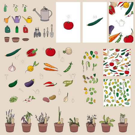 patio set: Set with vegetables, garden tools and equipment. For your Illustration