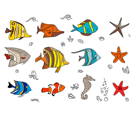 amphiprion: Set with coral fishes. For your design