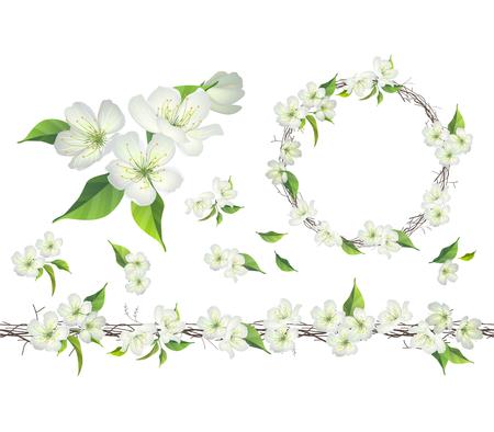 apfel: Blühender Zweig der Apfelbaum. Endlose patttern Bürste, runde Kranz.