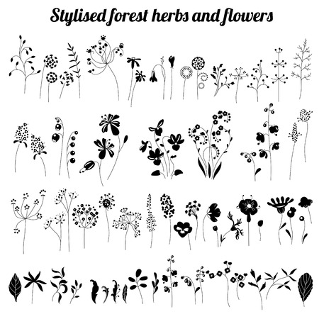 Collection of stylized herbs and plants.  Black and white silhouette. Pattern for your design, romantic greeting cards, announcements, posters. Illustration
