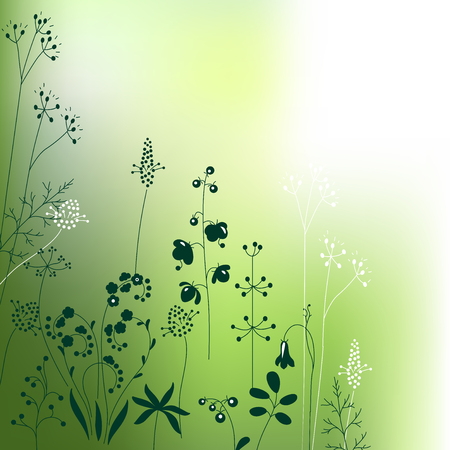 wild herbs: Floral abstract template with stylized herbs and plants.  Silhouette of plants. Pattern for your design, romantic greeting cards, announcements, posters.