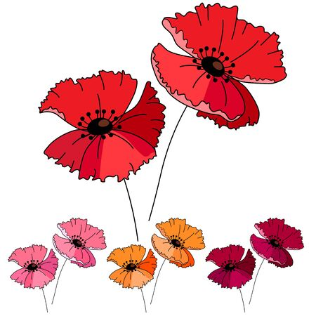 fields of flowers: Stylized cute red poppy isolated on white background. Object for your summer design, fabrics, greeting cards, announcements, posters. Illustration