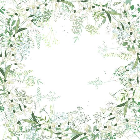 marcos decorativos: Marco cuadrado con Galanthus contorno y hierbas en blanco. Modelo con las flores para el diseño de la primavera, tarjetas de felicitación floral, posters. Vectores