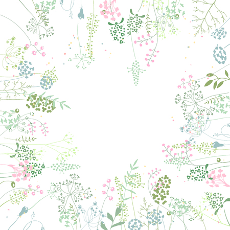 background frame: Square frame with contour  herbs on white. Pattern with flowers for your summer design, floral greeting cards, posters.